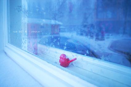 joulu_ikkuna.jpg