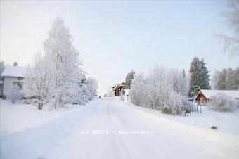 jurva_white2.jpg